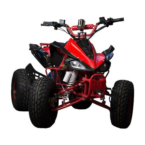 Cuatriciclo Eléctrico ATV 1000 W